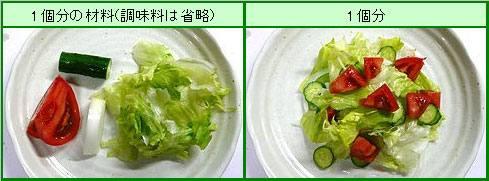 サラダ カロリー